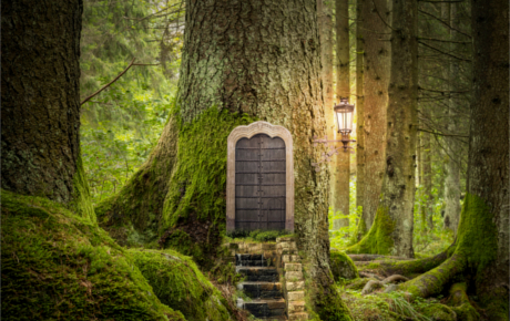 Le référence universelle de l'arbre de vie